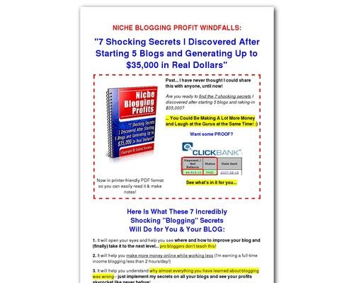Niche Blogging Profits – Blog for Money
